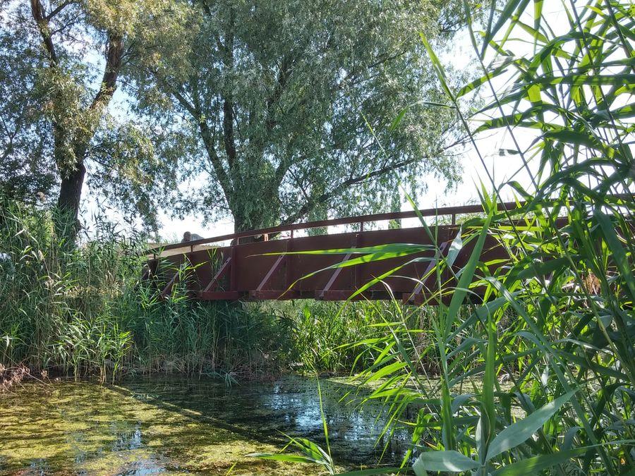 Kis-Duna öböl híd