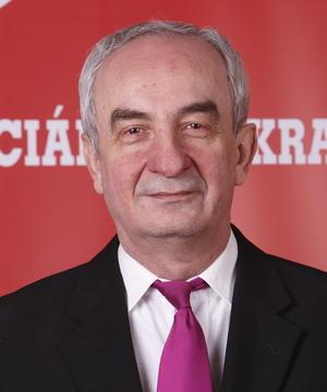 Rózsa Gyula Szocdemek