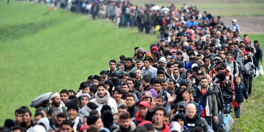 Több száz migráns tart Belgrádból a magyar határ felé