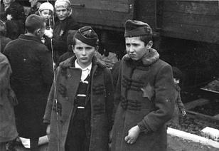 Magyar zsidó gyerekek Birkenauban