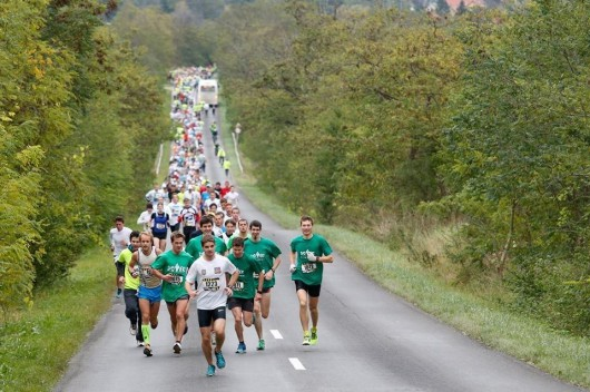 Kolóra is emlékeztek a félmaratoni versenyen