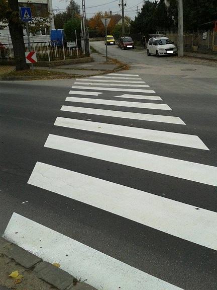 zebra-uj2